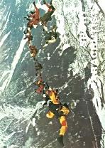 035-1973-2